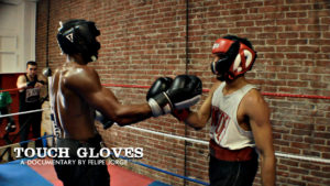 Touch Gloves1